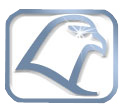 cropped-falcon-metal-logo-1-1.png